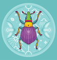 Insect Beetle Bug Design Elements Line Graphic vector image vector image