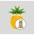 Organic pineapple icon vector image