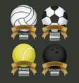 sports poster with set balloons vector image vector image