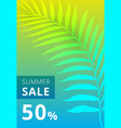 Summer sale banner palm leaves colorful
