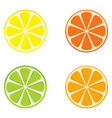slices of citrus fruits vector image