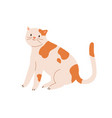 cute spotted cat sitting with raised tail funny vector image vector image