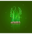 green grass on stone ground vector image