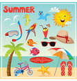 Set of Summer Elements and vector image vector image