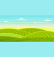 sunny rural landscape with hills and fields vector image vector image