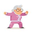 wushu kungfu taichi fitness healthy activities vector image vector image