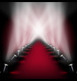 red carpet runway with spotlights vector image