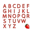 Alphabet set made from strawberry for your design vector image