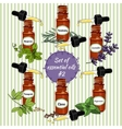 essential oils set 6 vector image vector image