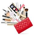 makeup bag vector image vector image