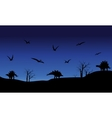 Silhouette of Pterodactyl and Stegosaurus vector image