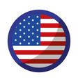 usa country flag icon vector image vector image