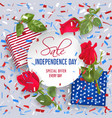 usa independence day sale card with confetti vector image
