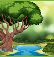 a forest background scene vector image vector image