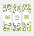 bundle of vertical web banner templates with green vector image