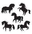Cartoon horses silhouettes on white background vector image vector image