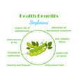 health benefits of soybeans flat style vector image vector image