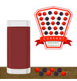 the theme currant vector image