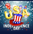 4th of july - independence day celebration vector image vector image