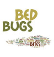 bed bugs come from text background word cloud vector image vector image