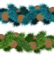 Conifers cones in pine branches vector image vector image