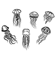 Different underwater jellyfishes vector image vector image