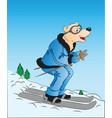 dog skiing vector image