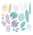 graphic collection exotic plants drawn vector image vector image