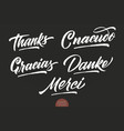 set of grunge hand drawn lettering thanks vector image vector image