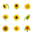 Sunflower icons set cartoon style