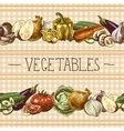 Vegetables seamless pattern border vector image vector image