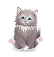 adorable kitten fluffy curly pet realistic vector image