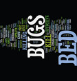 bed bugs in hotels text background word cloud vector image vector image
