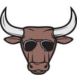 bull head with aviator sunglasses color vector image vector image