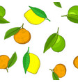 citrus fruits - orange lime seamless pattern vector image
