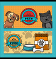 pet premium quality food banner vector image vector image