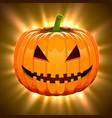 pumpkin for halloween on magic light background vector image vector image