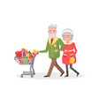 senior couple grandmother grandfather do shopping vector image vector image