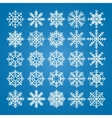 Snowflakes set pack of snowflakes vector image vector image