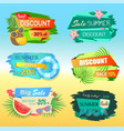 best discount labels with pineapple summer sale vector image vector image
