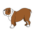cute cartoon bulldog isolated on white background vector image vector image