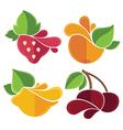 flat fruits emblems vector image vector image