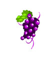 happy grape cartoon character girl in funny fruit vector image vector image