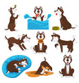 husky dog cartoon pet playing or training vector image