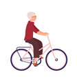 pretty elderly woman dressed in casual clothes vector image vector image