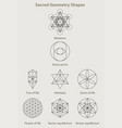 sacred geometry shapes vector image