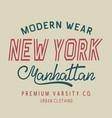 typography new york label vector image