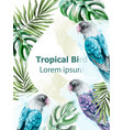 tropic card watercolor with colorful parrot vector image