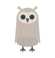 baby owl in flat style vector image vector image