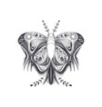 butterfly art design vector image vector image
